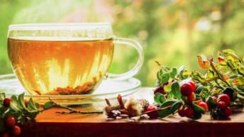 Как да приготвяме шипковия чай така, че да е най-полезен