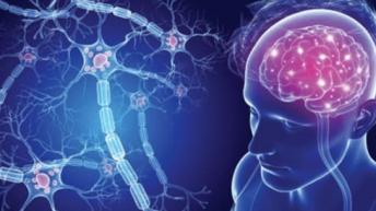 Множествената склероза – ранни симптоми