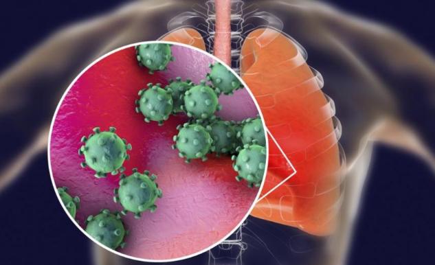Помагат ли народни средства за лечение на коронавирус